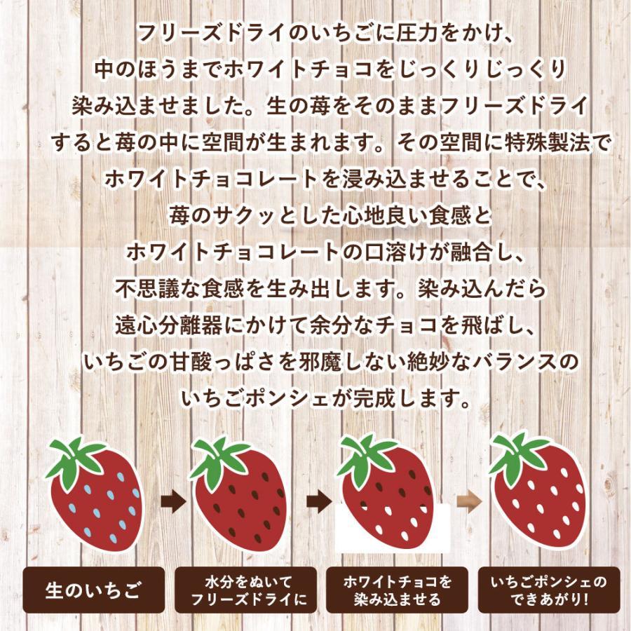 チョコレート 送料無料 苺 ショコラポンシェ 200g [ サクっとフリーズドライイチゴ 新食感 いちご スイーツ プチギフト お菓子 おやつ 苺 ]|bokunotamatebakoya|07