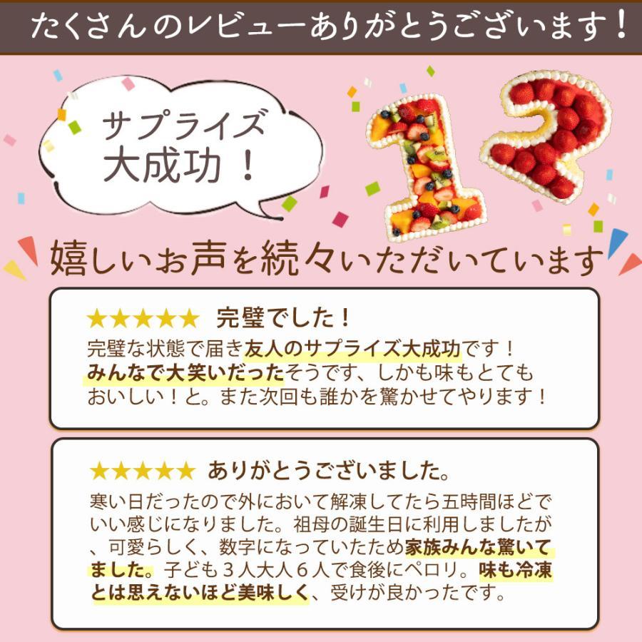 手作り パティシエ特製 数字ケーキ 誕生日 バースデー スイーツ お取り寄せ ギフト アニバーサリー お取り寄せ|bokunotamatebakoya|09