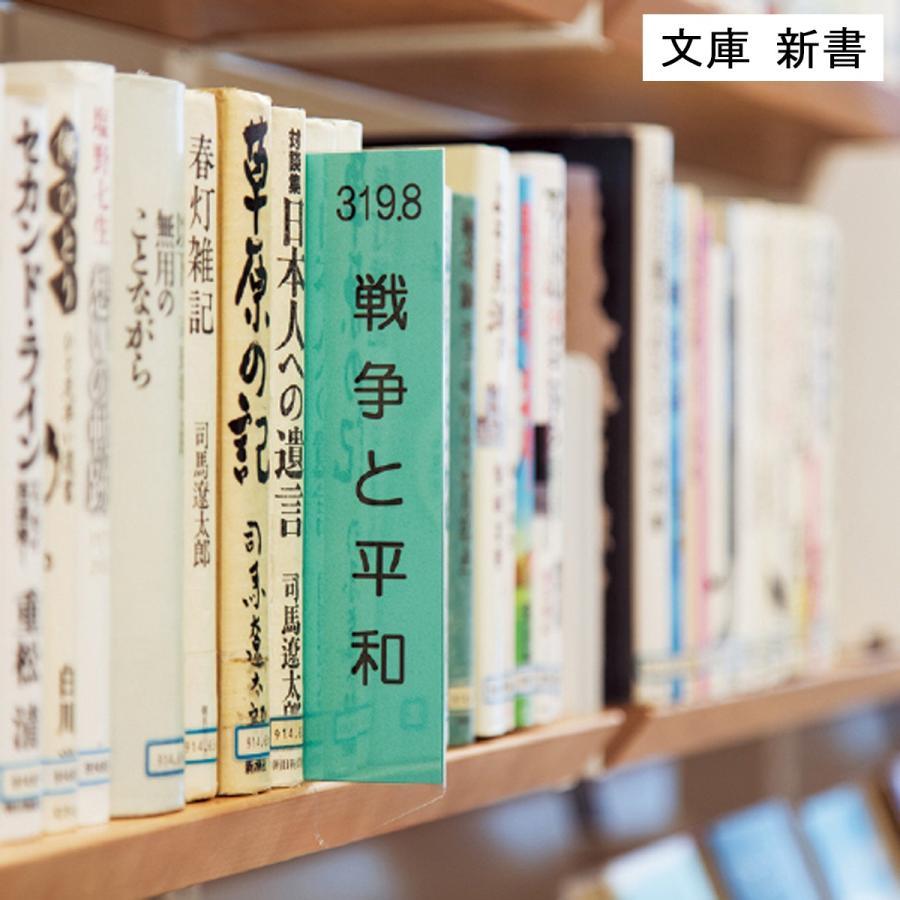 クリア インデックス  E 落下防止付 文庫新書 10枚|bookbuddy