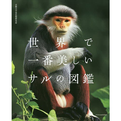 贈物 卸売り 世界で一番美しいサルの図鑑 京都大学霊長類研究所