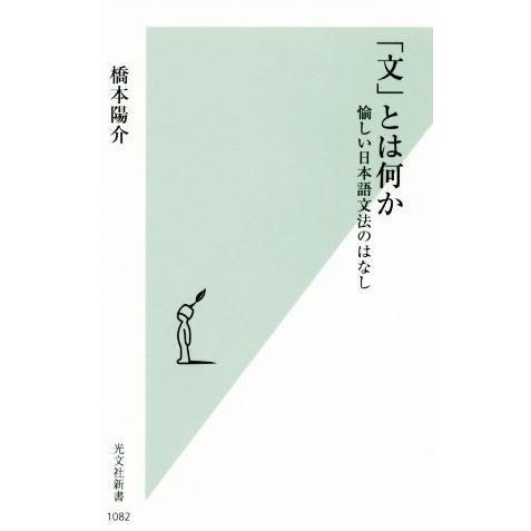 文 とは何か 愉しい日本語文法のはなし 著者 本日限定 光文社新書1082 橋本陽介 新色
