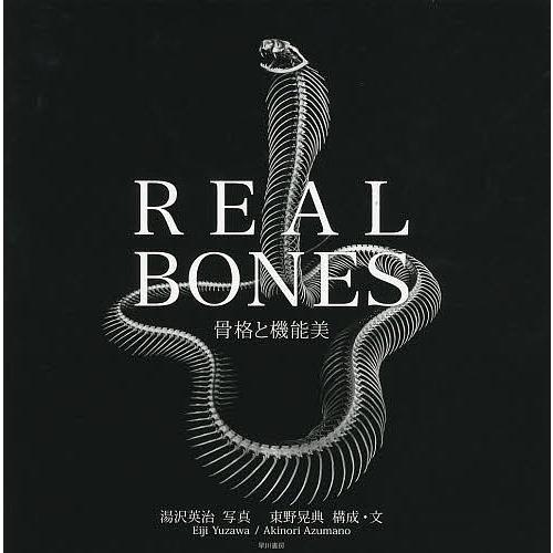 日曜はクーポン有/ REAL BONES 骨格と機能美/湯沢英治/東野晃典