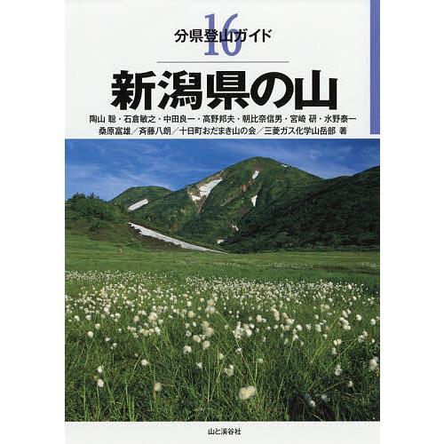 予約販売品 毎日クーポン有 新潟県の山 陶山聡 新作多数