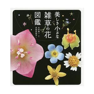 毎日クーポン有 商店 美しき小さな雑草の花図鑑 SALE 大作晃一 多田多恵子