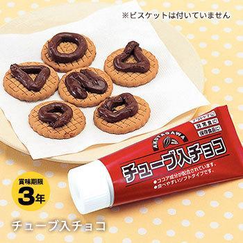 非常食 保存食 チューブ入りチョコ チョコレート お菓子 災害食 賞味期限2023年6月29日迄|bousai