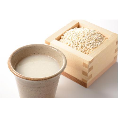 仲佐(ナカサ) 甘酒メーカー 甘酒のき・も・ち NAM-10L bp-s 03