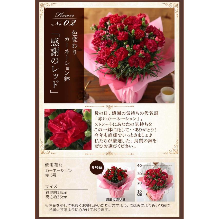 敬老の日 プレゼント ギフト 花 生花 造花 フラワー アレンジメント りんどう ユリ バラ イベントギフトC 2021 bunbunbee 03