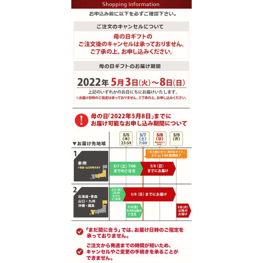 敬老の日 ギフト 造花 光触媒 花 プレゼント 光触媒アレンジ フラワー アレンジメント 送料無料 イベントギフトN 2021|bunbunbee|07