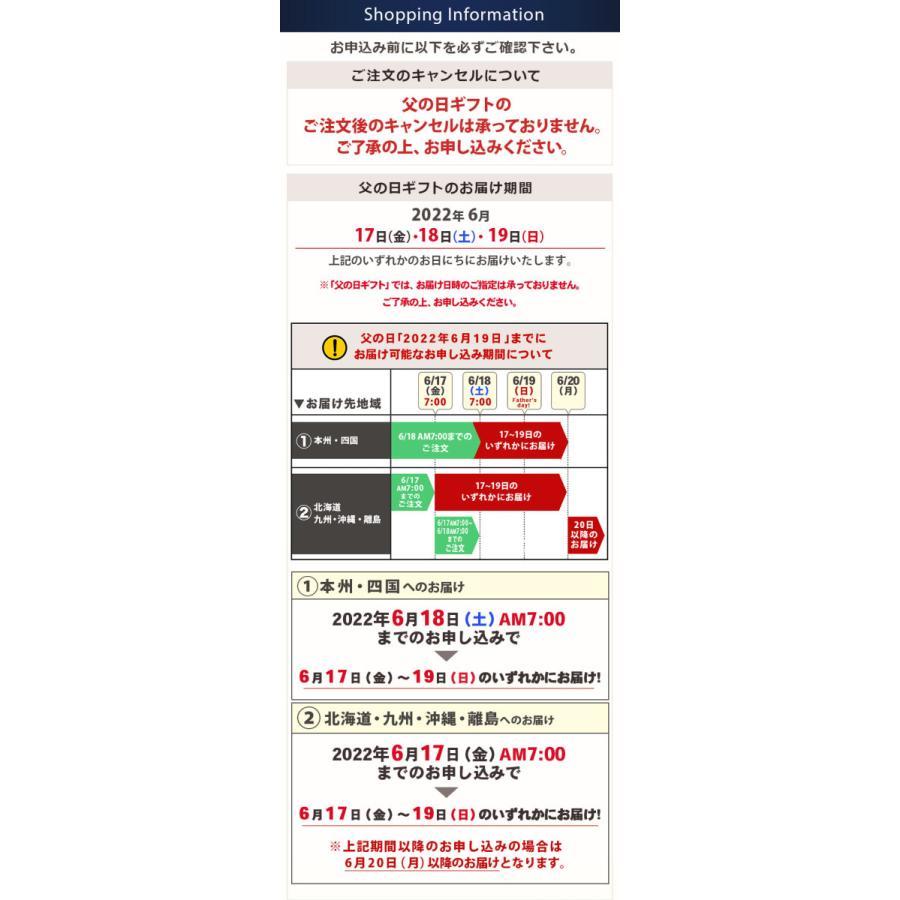 敬老の日 ギフト プレゼント 苔 テラリウム キット ハンドメイドキット プリザーブドモス 手作り おしゃれ イベントギフトL 2021|bunbunbee|06