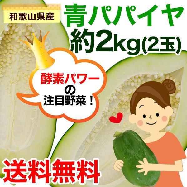和歌山県産 青パパイヤ 約2kg(2玉)(送料無料)※一部地域除くパパイン酵素たっぷり!効能たっぷり!※発送期間:9月上旬〜11月下旬頃まで (fy3) bundara 02