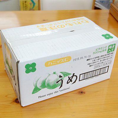 紀州産 ハニップCうめ(200g×15本入)(送料無料) りんご果汁とハチミツ入りのさわやかドリンク! (fy4)|bundara|02