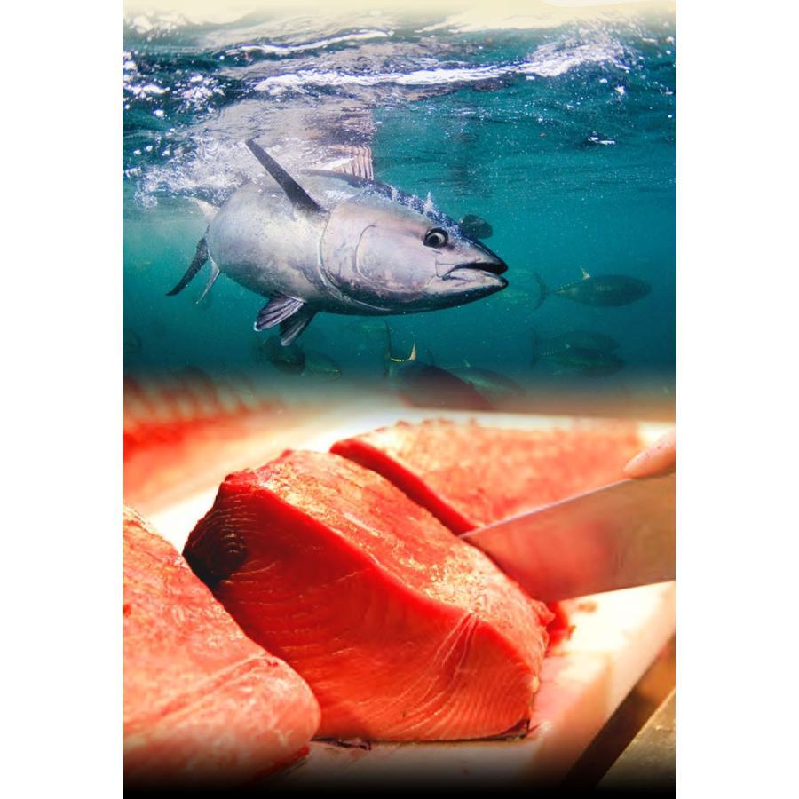 串本産 養殖 本まぐろ トロ、赤身セット(赤身 150g以内、トロ350g以上)サクの状態で3〜4袋でお届け(真空包装) (fy8)|bundara|05