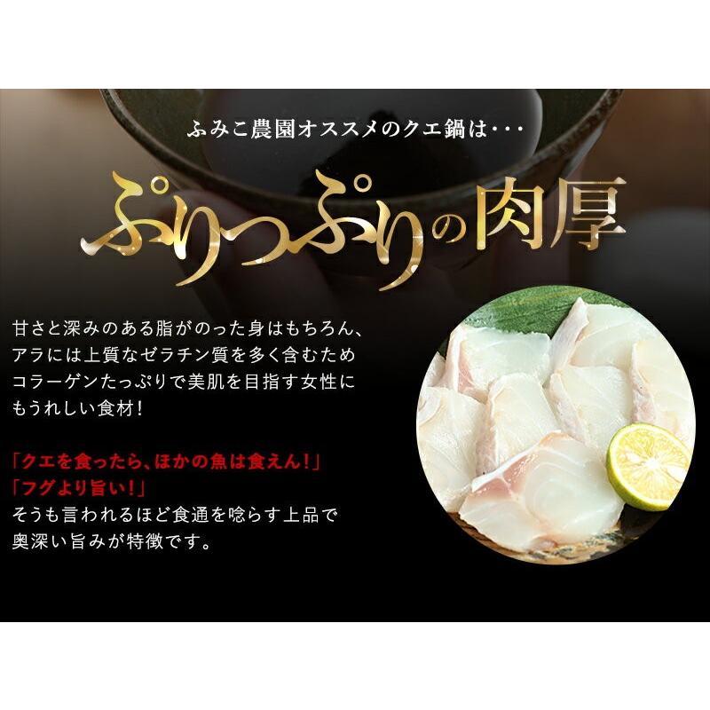 送料無料!鍋の王様 天然クエ鍋セット(くえ鍋)500g(アラ、身 各250g)約3人前 紀州ゆずポン酢2本、簡単鍋レシピ付 (fy9)|bundara|05