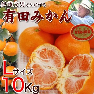 伊藤さんの有田みかん Lサイズ10kg