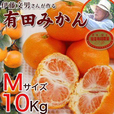 伊藤さんの有田みかん Mサイズ10kg