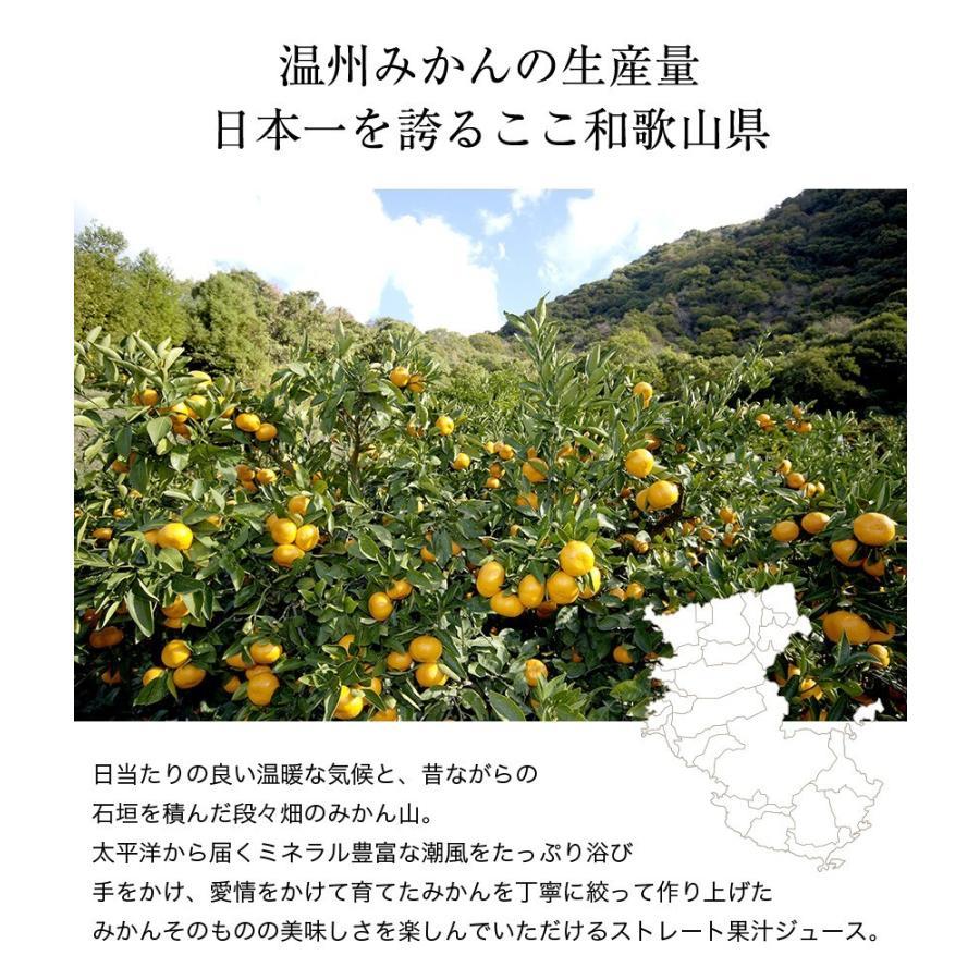 プレゼント 内祝 送料無料 果実 温州みかんジュース ストレート果汁 6本 果汁100% オレンジジュース  (fy4)|bundara|05