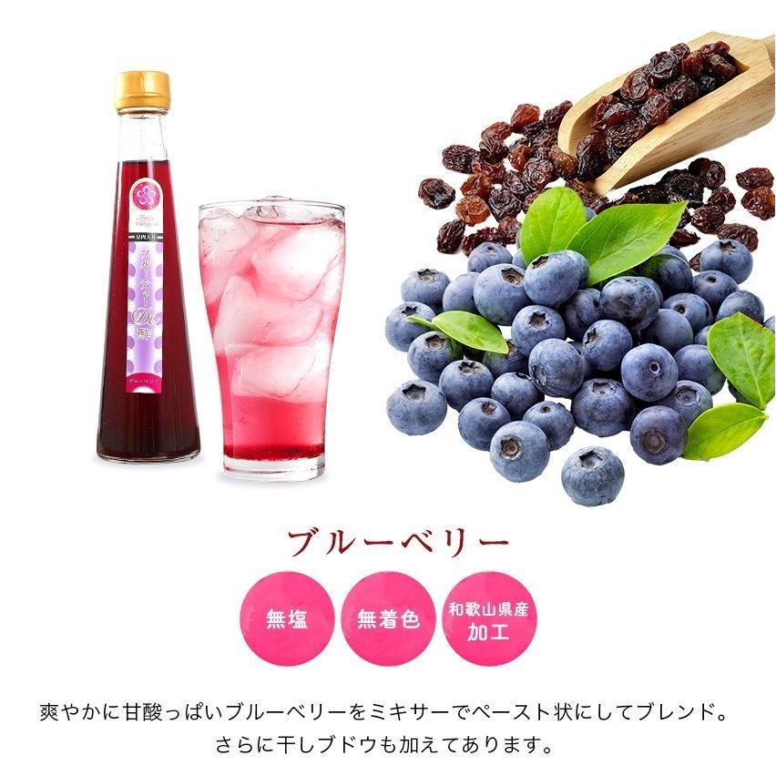 ギフト プレゼント 送料無料 健康 飲むお酢 果汁たっぷり フルーティde酢 3本 (いちじく、柚子、ブルーベリー)各200g (fy5) bundara 07