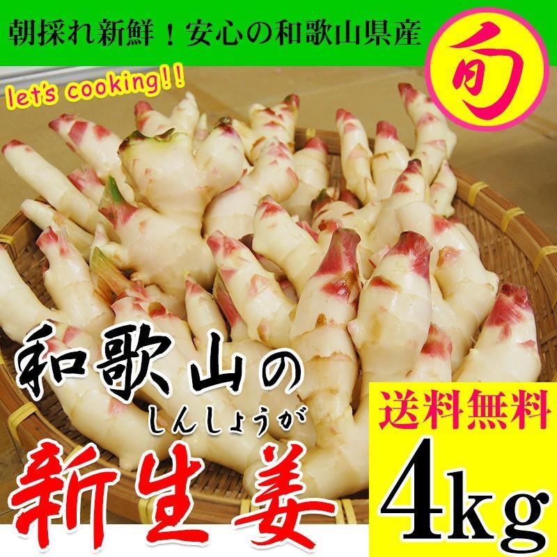 新生姜 4kg