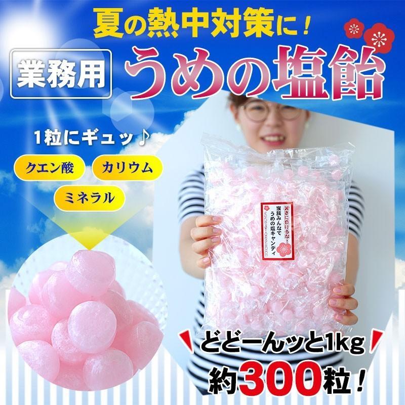 梅塩飴(梅塩キャンディ)お得な業務用大袋1kg入