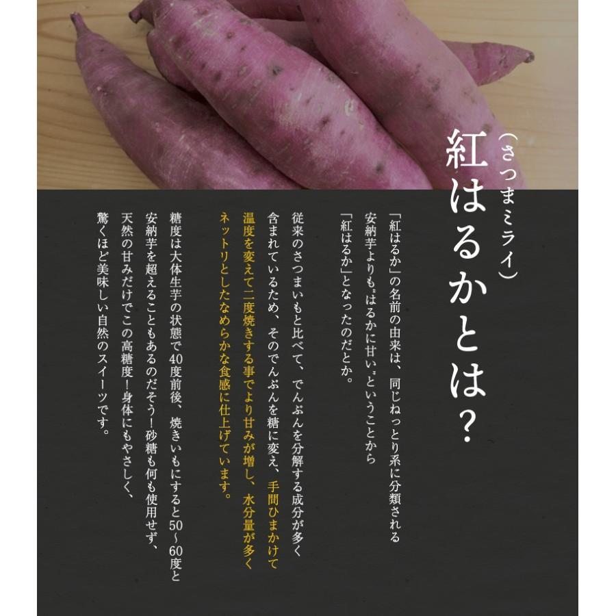 ギフト 無添加 スイーツ セット! あんぽ柿・濃密焼き芋・ひと口焼芋 3種の組み合わせから選べます! 送料無料!竹かご入 冬ギフト 和菓子 プレゼント (fy5)|bundara|07
