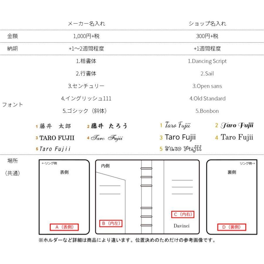 【名入れ可】レイメイ藤井 DSA1702 システム手帳 ダヴィンチ グランデ アースレザー A5サイズ リング25mm bunsute 06