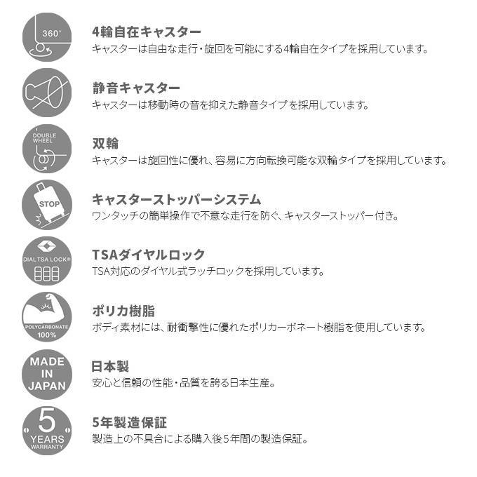 最大14% 【在庫限り】【5年保証】エース ウォッシュボードF スーツ ...