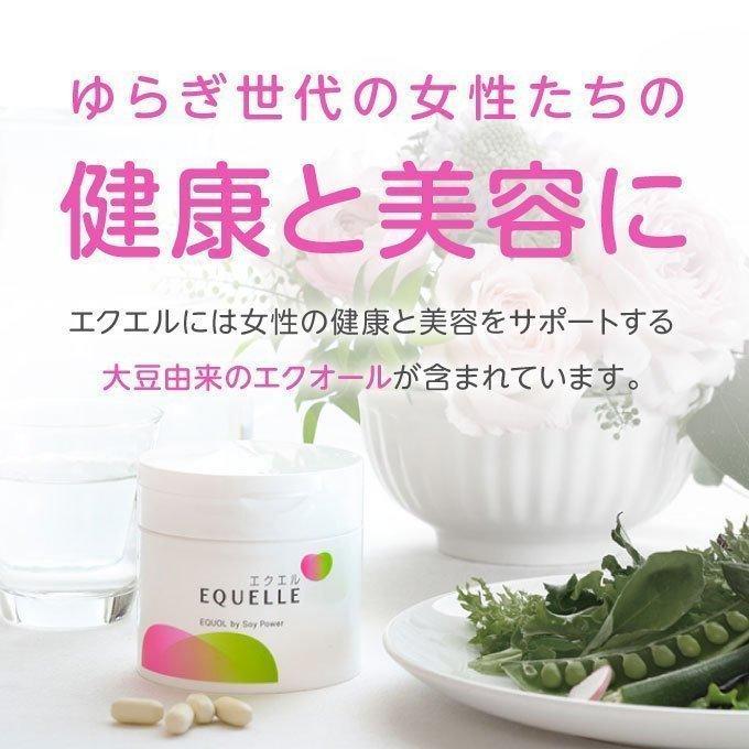 エクエル パウチ 120粒×3袋 大塚製薬 エクオール cabe-bata 06
