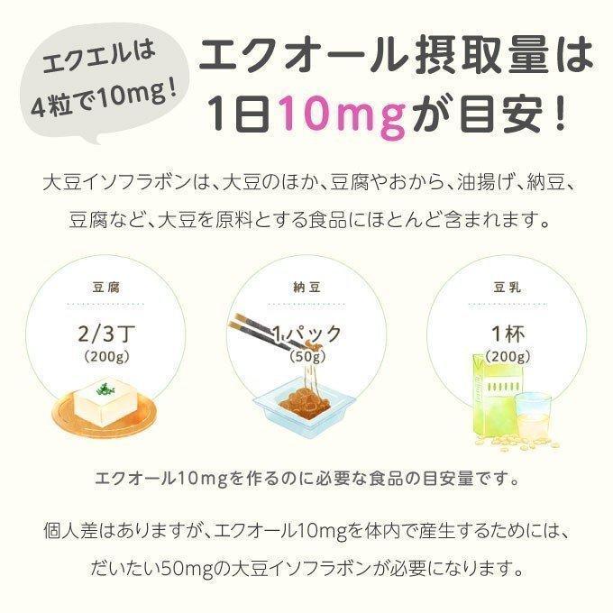 エクエル パウチ 120粒×3袋 大塚製薬 エクオール cabe-bata 08