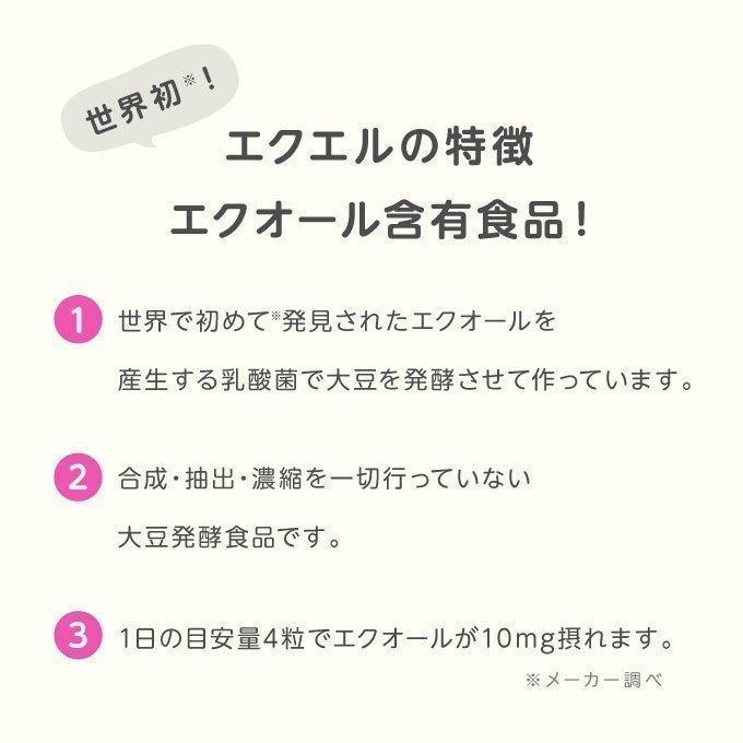 エクエル パウチ 120粒×3袋 大塚製薬 エクオール cabe-bata 09