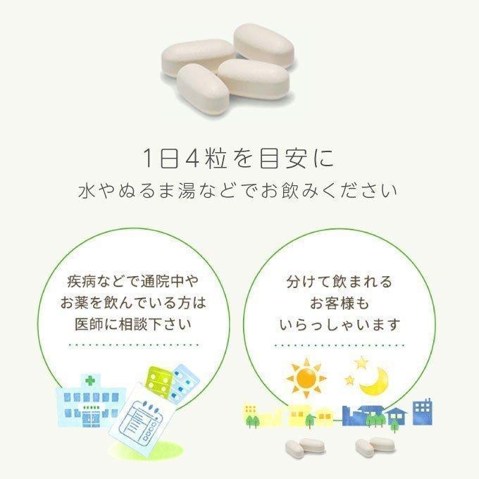 エクエル パウチ 大塚製薬 120粒入り 1袋  エクオール|cabe-bata|10