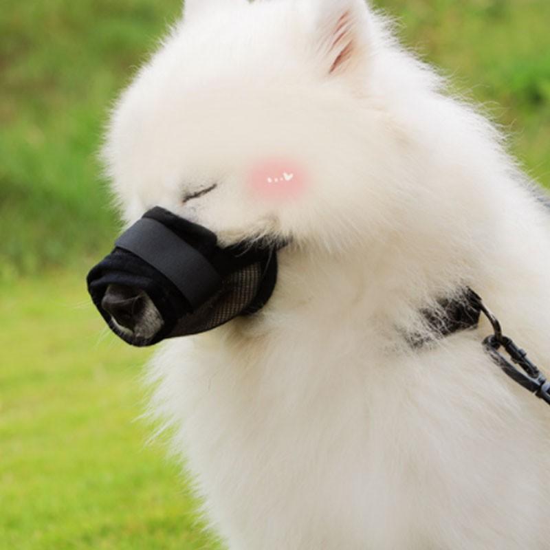 犬用 ペットマスク 安全カバー マナーマスク メッシュ 無駄吠え防止グッズ お散歩 訓練 練習 トレーニング 口輪 しつけ用品 ペット用品 くちばし 調整可|cactus0812|06