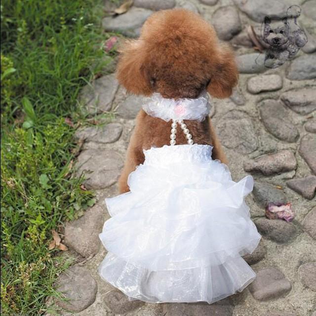 ペット コスプレ 犬用 ウエディングドレス ドッグコスチューム ドレス+ベール 小型犬〜中型犬 犬用衣装 かわいい ペット衣装|cactus0812