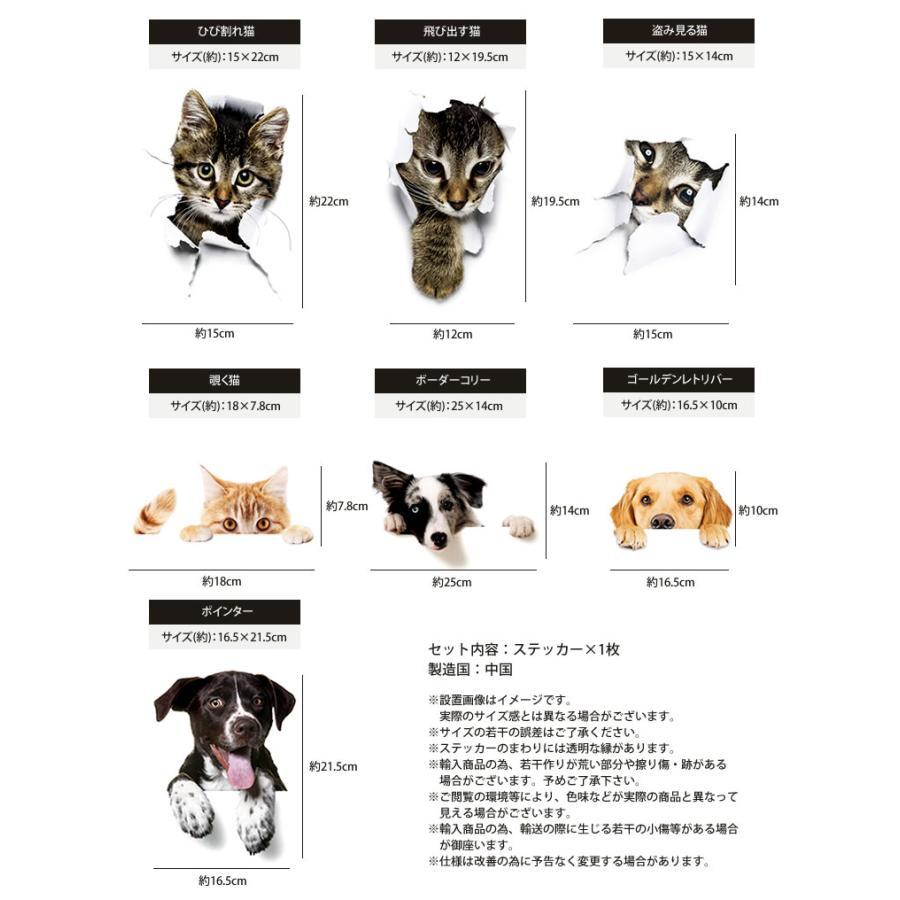 動物 カーステッカー アニマル 犬 猫 かわいい ドレスアップ 車 バイク カー用品 ステッカー|calmshop|06
