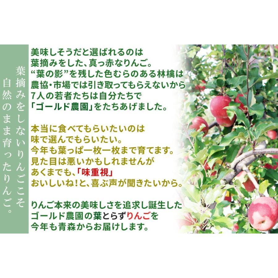 りんご の常識を変える★葉とらず栽培 送料無料 本場青森 【葉とらずりんご ふじ2kg ファーム】家庭用(5-9玉) リンゴ 林檎 [※産地直送のため同梱不可]「GOLD」 cameashi 05