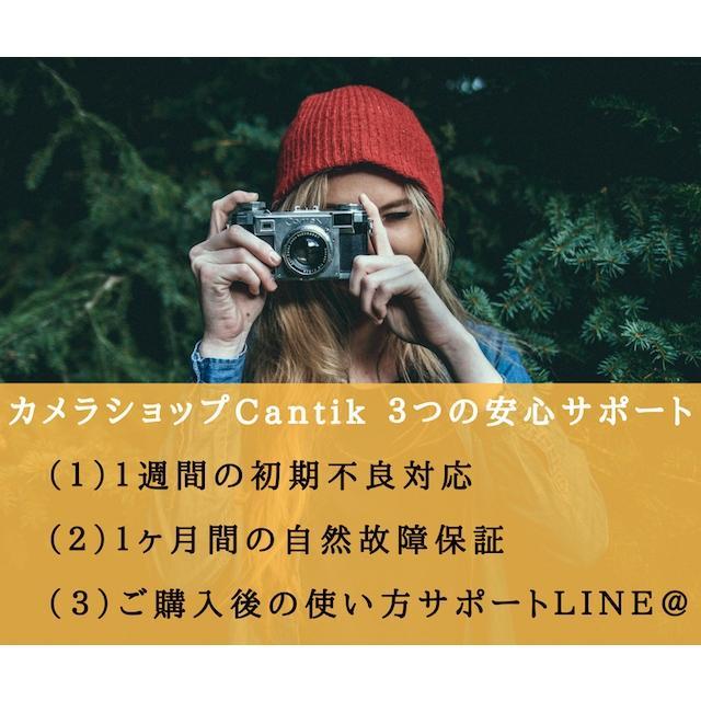 カメラ 一眼レフ Nikon ニコン D3300 ブラック 18-55mm レンズキット|cameracantik|09