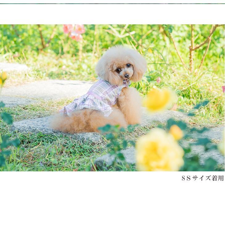 犬 服 犬服  春夏 チェック フリル ワンピース  犬の服 新作 きゃんナナ ドッグウェア ブランド|cannanaonline|03