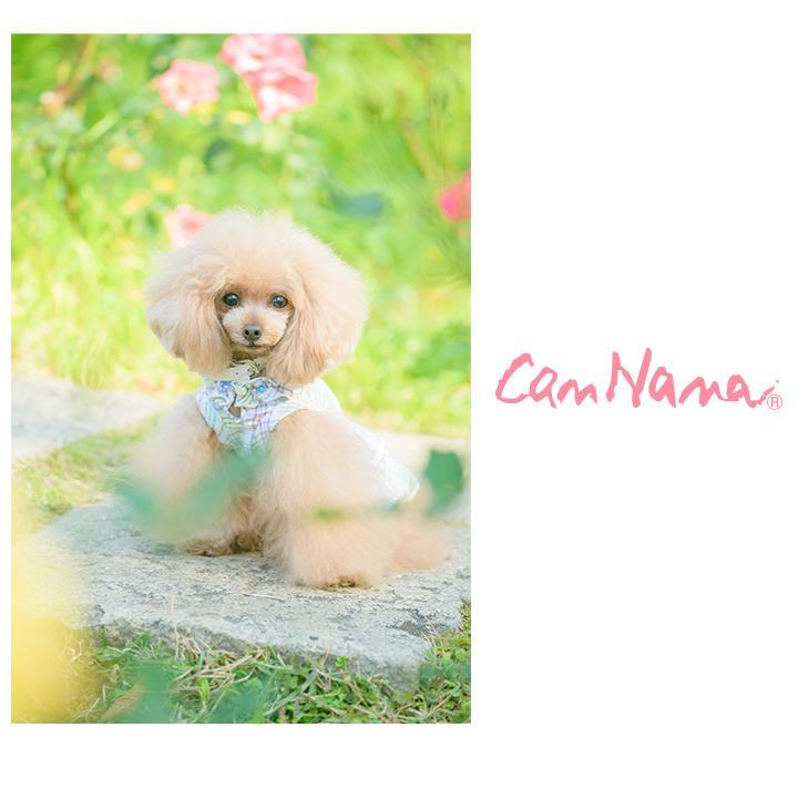 犬 服 犬服  春夏 チェック フリル ワンピース  犬の服 新作 きゃんナナ ドッグウェア ブランド|cannanaonline|08