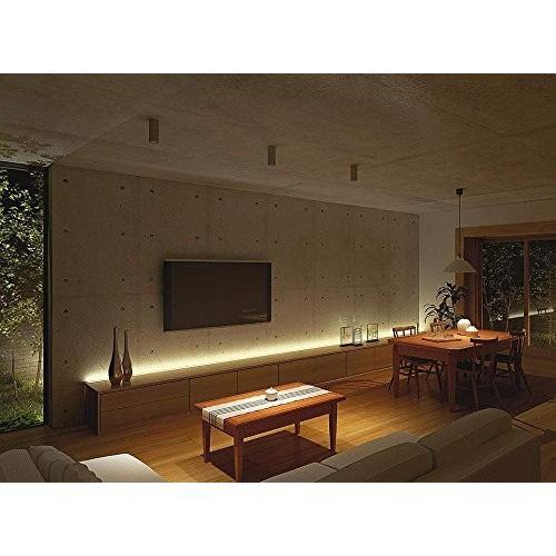 大光電機(DAIKO) LEDペンダント (ランプ付) LED電球 9W(E26) 昼光色 6200K 6200K 電球色 2700K DPN-3979