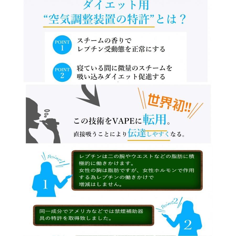 エアロスリムチャージャー  ブラックバッテリー careshop-lincle 04