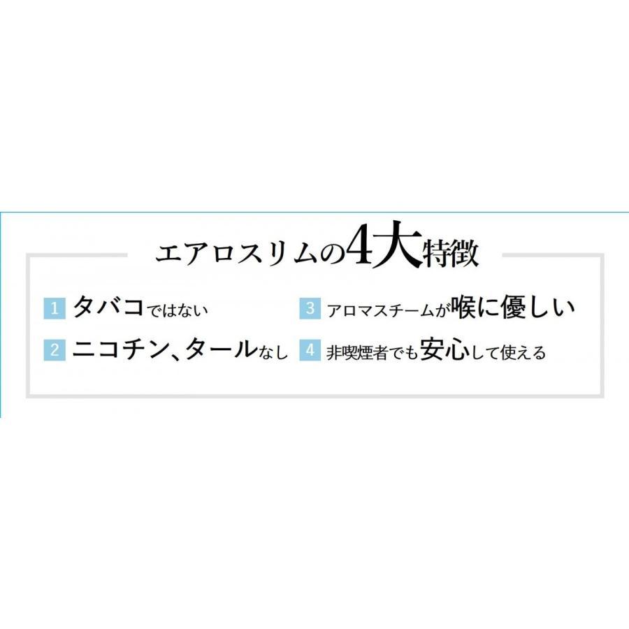 エアロスリム フルーツフレーバー(ブルーベリー・マンゴ)|careshop-lincle|03