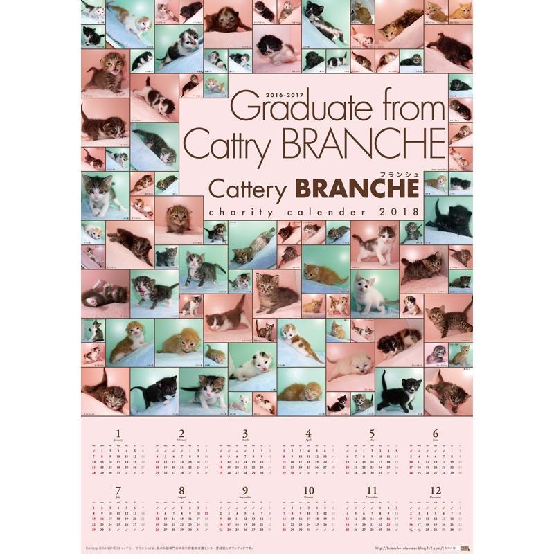 【ネコポス便可能】2018年 Cattery BRANCHE チャリティーポスターカレンダー /猫/ネコ/ねこ/子猫/乳飲み猫/ cattery-branche