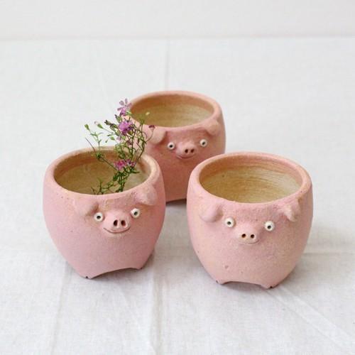 植木鉢 ピンク ブタ 小 陶器 動物 かわいい 多肉 信楽焼 利十郎窯 cayest 06