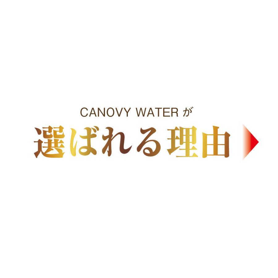 CBDウォーター【CANOVY WATER】CBD配合 20本セット 送料無料|cbd-direct|05