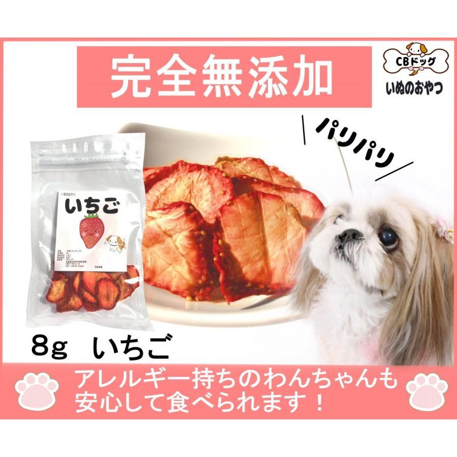 いちごチップス【犬のおやつ 無添加】【犬のおやつ 果物】完全無添加 ノンフライ・ノンオイル ノンシュガー ドライチップス アレルギーのあるわんちゃんに 8g|cbdog