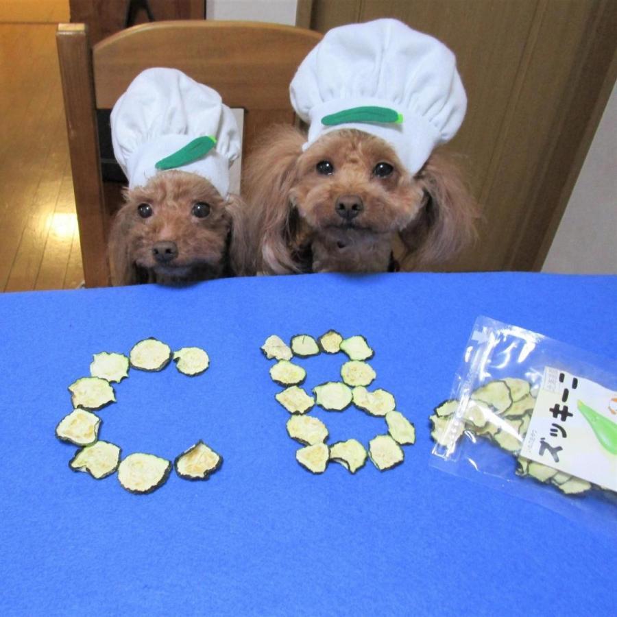 ズッキーニチップス 【犬のおやつ 無添加】【犬のおやつ 野菜】完全無添加 北海道産 ノンフライ・ノンオイル ノンシュガー アレルギーのあるわんちゃんに 20g cbdog 04