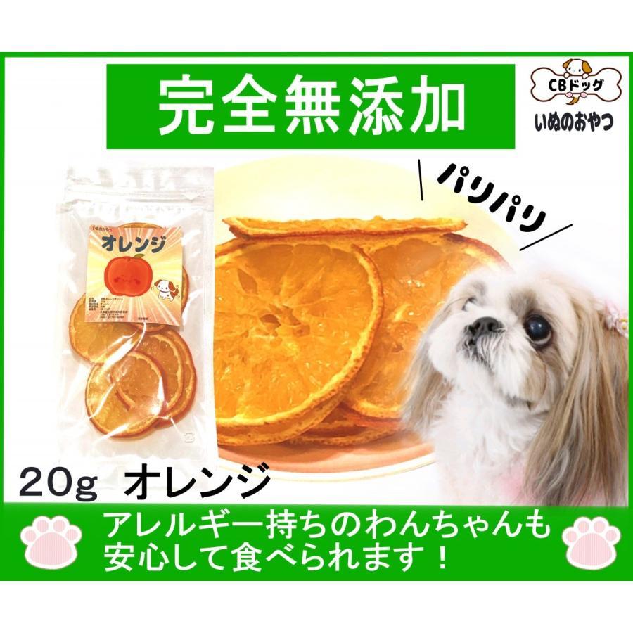 オレンジ チップス【犬のおやつ 無添加】【犬のおやつ 果物】 完全無添加 果物 ノンフライ・ノンオイル ノンシュガー アレルギーのあるわんちゃんに 20g|cbdog