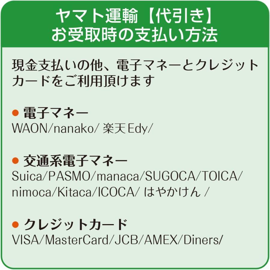 ハーゲンダッツギフト券 5枚 高級ギフトボックス 赤 ハーゲンダッツ アイスクリーム ギフト券 化粧箱入り|cdcstore|10
