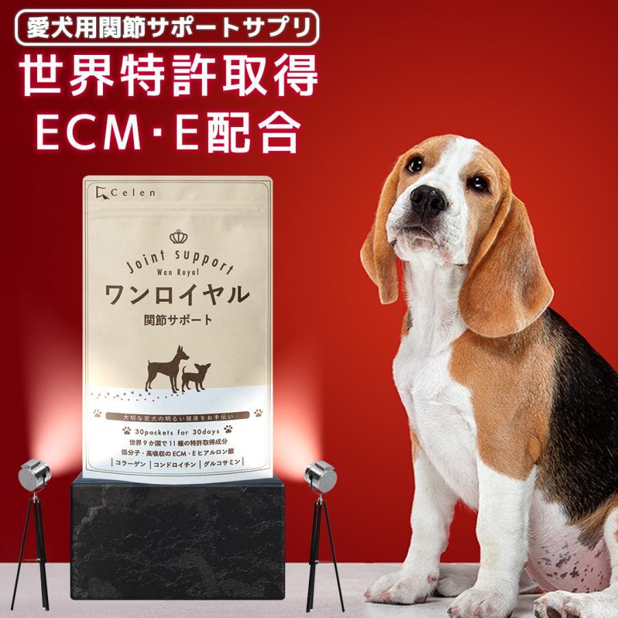 【特許成分 ECME 配合】Wan Royal ワンロイヤル 関節 サポート 犬 犬用 老犬 サプリ サプリメント グルコサミン ドッグフード おやつ ギフト プレゼント celen