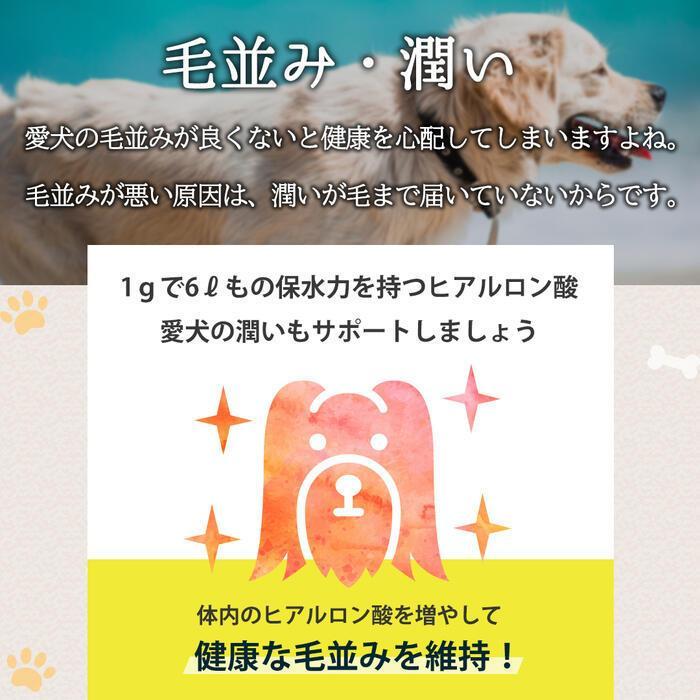 【特許成分 ECME 配合】Wan Royal ワンロイヤル 関節 サポート 犬 犬用 老犬 サプリ サプリメント グルコサミン ドッグフード おやつ ギフト プレゼント celen 11
