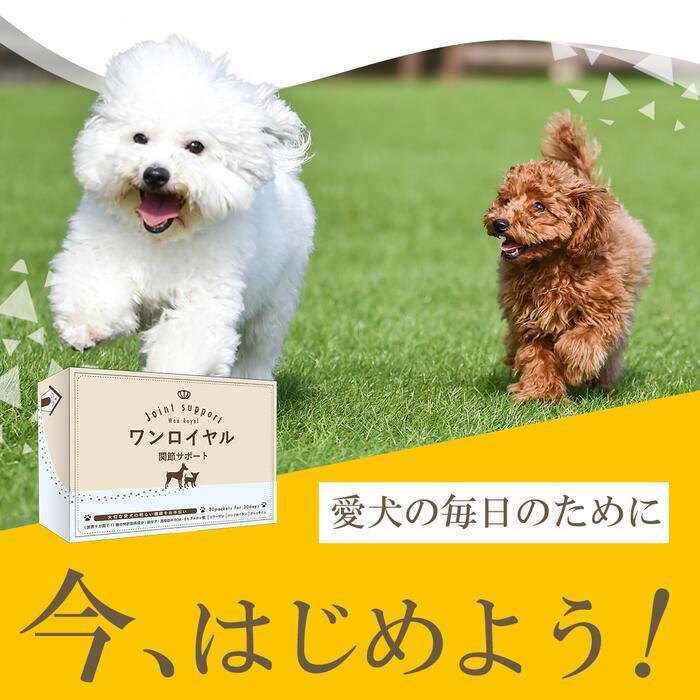 【特許成分 ECME 配合】Wan Royal ワンロイヤル 関節 サポート 犬 犬用 老犬 サプリ サプリメント グルコサミン ドッグフード おやつ ギフト プレゼント celen 21